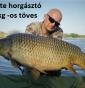 Mészáros István teszthorgászunk első beszámolója 2020-05